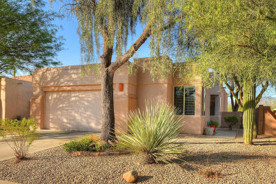 Tucson Single Family Home For Sale: 4094 W Coles Wash Lane