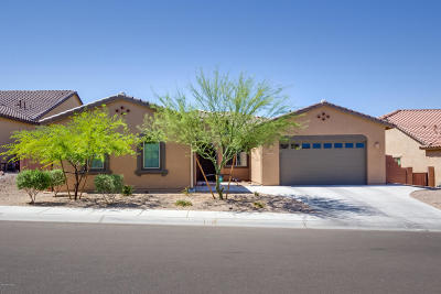 Marana Single Family Home For Sale: 5465 W Dry Creek Court