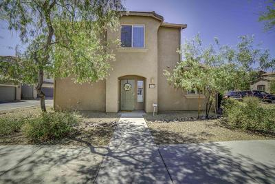Tucson Single Family Home For Sale: 10604 E Native Rose Trail