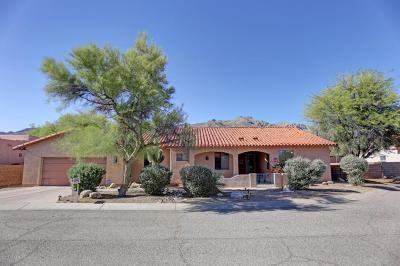 Tucson Single Family Home For Sale: 11121 E Spearhead Court