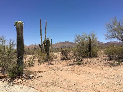 Tucson Residential Lots & Land For Sale: 1448 N Sandario Road