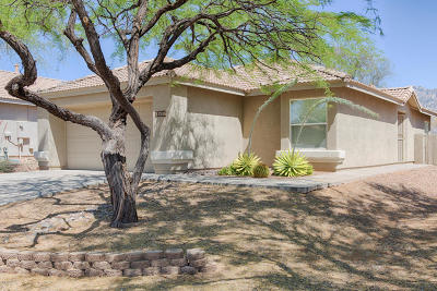 Oro Valley Single Family Home For Sale: 13206 N Classic Overlook Court