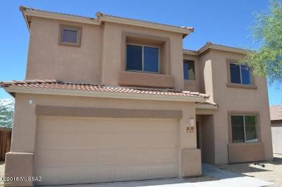 Tucson Single Family Home For Sale: 8170 S Placita Gijon