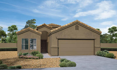 Marana Single Family Home For Sale: 12888 N Benoni Court