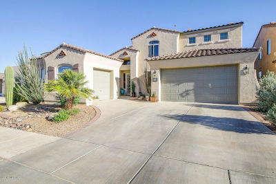Sahuarita Single Family Home Active Contingent: 434 E Via Puente De La Lluvia