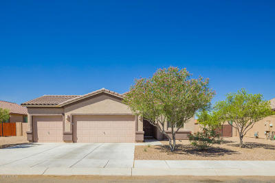 Marana Single Family Home For Sale: 13899 N Swift Spear Drive