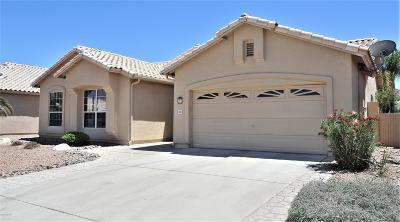 Tucson Single Family Home For Sale: 7635 W Summer Sky Drive