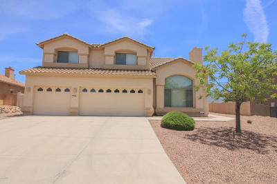Tucson Single Family Home For Sale: 39661 S Mountain Shadows Drive