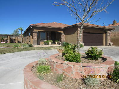 Rio Rico Single Family Home For Sale: 1061-2 Camino Caralampi E