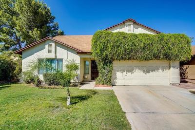 Tucson Single Family Home For Sale: 9240 Pheasant Court
