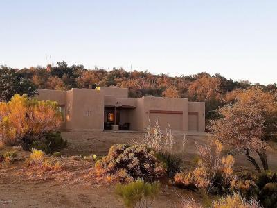 Oracle Single Family Home For Sale: 1203 W Bella Roca