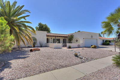 Green Valley AZ Single Family Home For Sale: $209,900