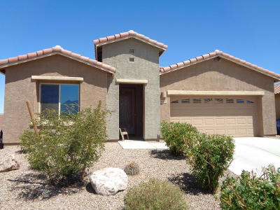 Sahuarita Single Family Home For Sale: 1037 E Empire Canyon Lane