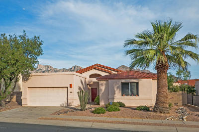 Tucson Single Family Home For Sale: 299 W Ajax Peak Road