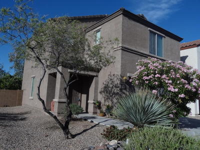 Tucson Single Family Home For Sale: 6010 S Hawks Hollow Court