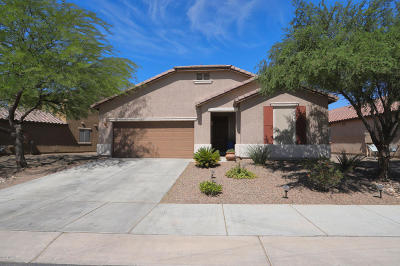 Marana Single Family Home For Sale: 12635 N Brabant Drive