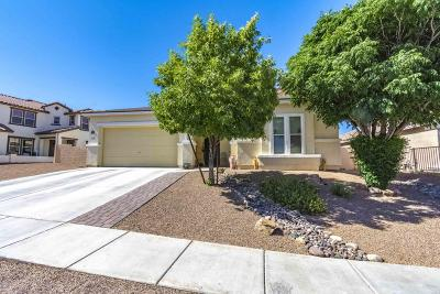 Sahuarita Single Family Home For Sale: 756 W Calle La Bolita
