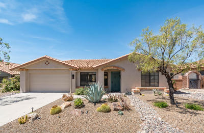 Oro Valley Single Family Home For Sale: 14557 N Lone Wolf Lane