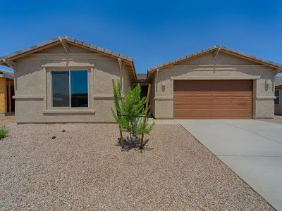 Marana Single Family Home For Sale: 12323 N Sandby Green Drive