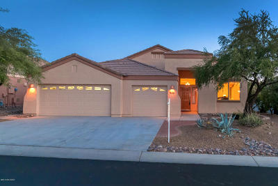 Marana Single Family Home For Sale: 13825 N Heritage Canyon Drive
