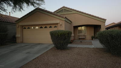 Sahuarita Single Family Home For Sale: 370 N Rock Station Drive