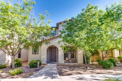 Tucson Single Family Home Active Contingent: 2760 N Neruda Lane