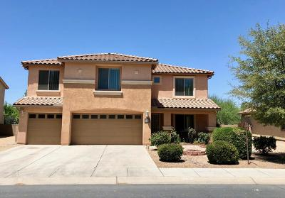 Marana Single Family Home For Sale: 12499 N Barbadense Drive