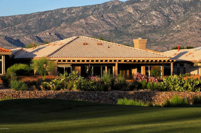 Oro Valley Single Family Home For Sale: 14607 N Lost Arrow Drive