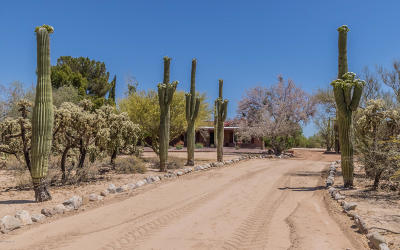 Pima County Single Family Home For Sale: 5000 W Oasis Road