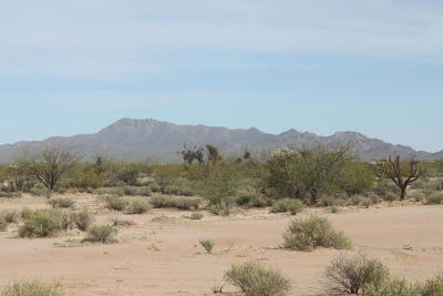 Tucson Residential Lots & Land For Sale: 15180 W Alibi Drive