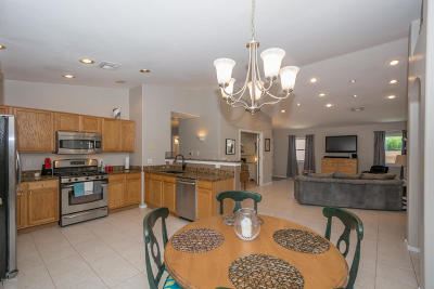 Tucson Single Family Home For Sale: 11357 N Old Ram Court