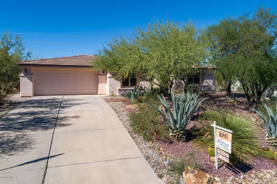 Tucson Single Family Home For Sale: 4148 S Boulderfield Place