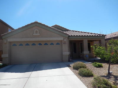 Tucson Single Family Home For Sale: 9001 Cedarbrook Lane