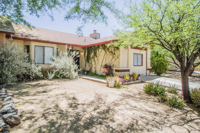 Tucson Single Family Home For Sale: 4789 S Windrose Drive