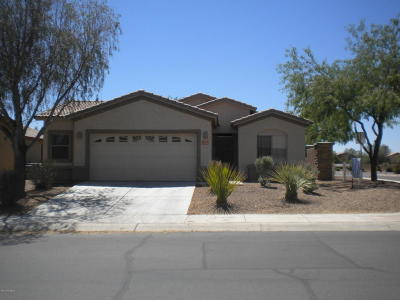 Marana Single Family Home For Sale: 12707 N Crooked Willow Drive