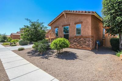 Sahuarita Single Family Home For Sale: 644 W Camino Tunera