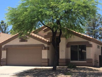 Tucson Single Family Home For Sale: 2437 N Creek Vista Drive