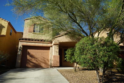 Sahuarita Single Family Home For Sale: 14377 S Camino Vallado