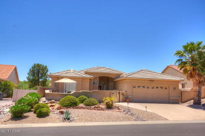Single Family Home For Sale: 37302 S Rock Crest Drive