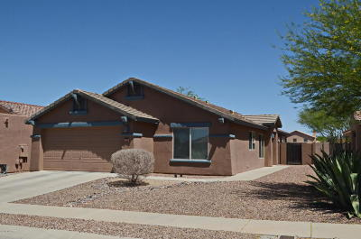 Tucson Single Family Home For Sale: 9072 N School Hill Drive