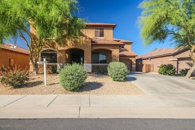 Marana Single Family Home Active Contingent: 3634 W Tailspin Place
