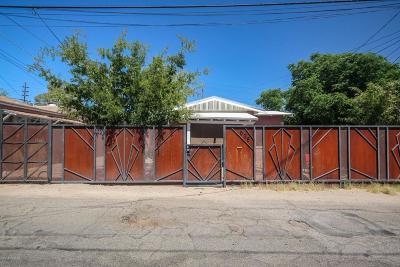 Tucson Single Family Home For Sale: 538 N Hoff Avenue