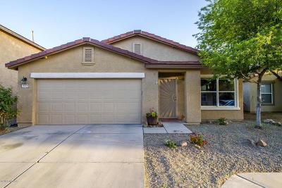 Tucson Single Family Home For Sale: 10370 E Haymarket Street
