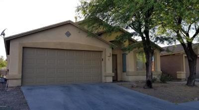Tucson Single Family Home For Sale: 4590 S Paseo Rio Bravo
