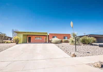 Tucson Single Family Home For Sale: 7510 E 38th Street