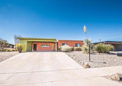 Tucson Single Family Home For Sale: 7510 E 38th Street