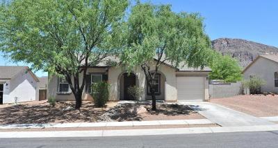 Tucson Single Family Home For Sale: 4824 W Calle Don Alberto
