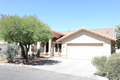 Tucson Single Family Home For Sale: 2490 W Fostoria Place