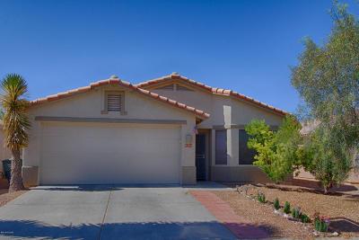 Tucson Single Family Home For Sale: 9274 E Corte Arroyo Verde