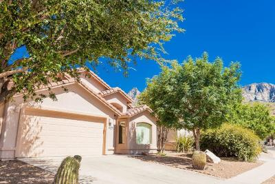 Oro Valley Single Family Home For Sale: 11264 N Flat Granite Drive